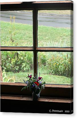Looking Out Canvas Print by Carolyn Postelwait