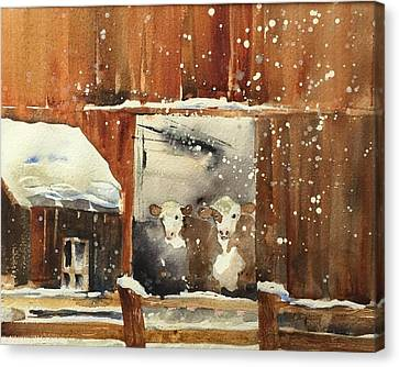 Looking Out Canvas Print by Lena Thynell