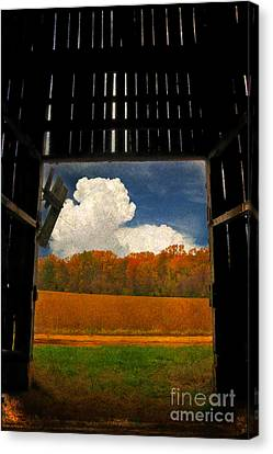 Looking Out Canvas Print by Lois Bryan
