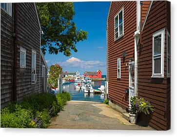 Looking Rockport Canvas Print by Emmanuel Panagiotakis