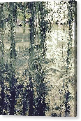 Looking Through The Willow Branches Canvas Print by Linda Geiger