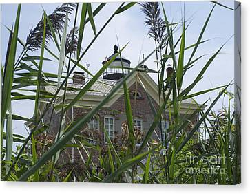 Looking Through To Lighthouse Canvas Print by Lori Amway