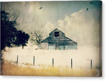 Looking To Land Canvas Print by Julie Hamilton