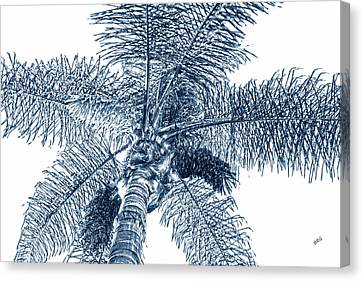 Canvas Print featuring the photograph Looking Up At Palm Tree Blue by Ben and Raisa Gertsberg