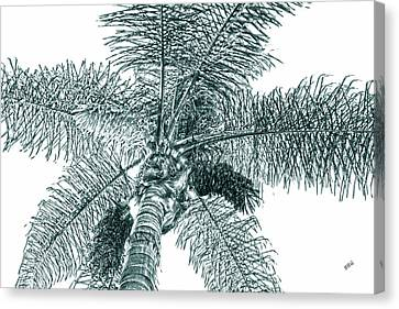 Canvas Print featuring the photograph Looking Up At Palm Tree Green by Ben and Raisa Gertsberg