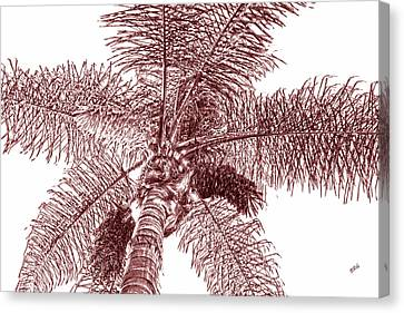 Canvas Print featuring the photograph Looking Up At Palm Tree Red by Ben and Raisa Gertsberg