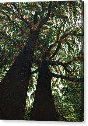 Looking Up Canvas Print by Donna Manaraze