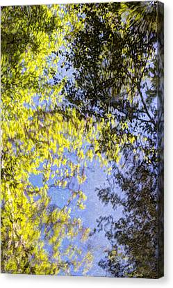 Canvas Print featuring the photograph Looking Up Or Down by Heidi Smith