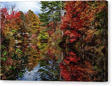 Canvas Print featuring the photograph Looking Up The Chocorua River by Jeff Folger