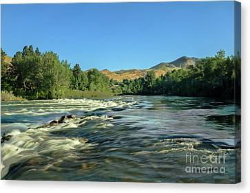 Looking Up The Payette Canvas Print by Robert Bales
