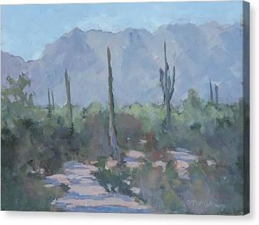 Looking West From Ahwatukee Canvas Print