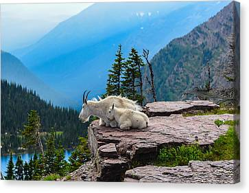 Lookout Ledge Canvas Print