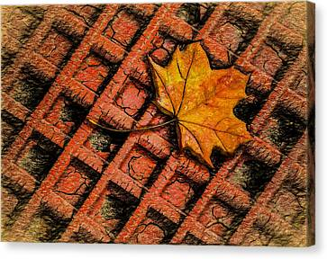 Burnt Umber Canvas Print - Looks Like Another Leaf by Paul Wear