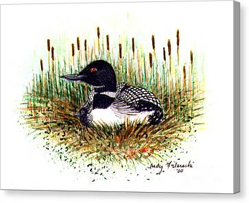 Loon And Baby Judy Filarecki Watercolor Canvas Print by Judy Filarecki