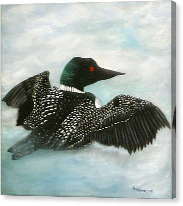 Loon Canvas Print by Rebecca  Fitchett