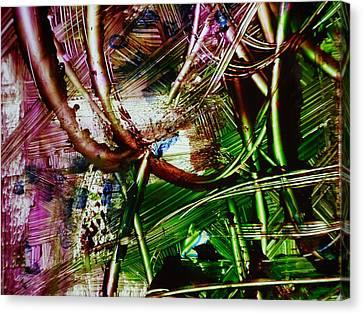 Looped Canvas Print by Karen Lillard