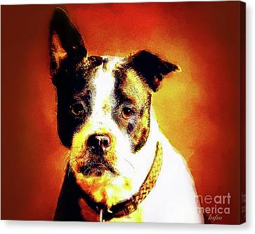Bulls Canvas Print - Lopped Ear by KaFra Art