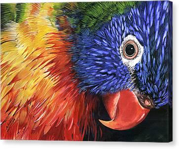 Lorikeet Canvas Print by Nadi Spencer