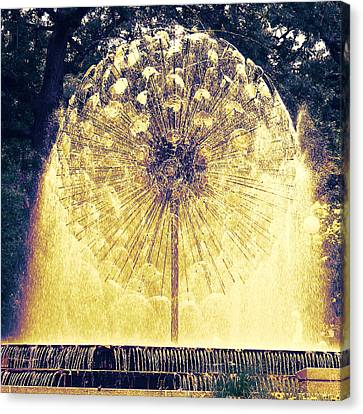 Loring Fountain Canvas Print by Rashelle Brown