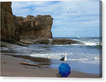 Lost And Found Canvas Print by Diane Schuster