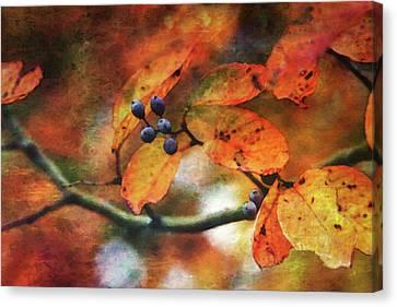 Lost Autumns Beauty 6570 Ldp_2 Canvas Print