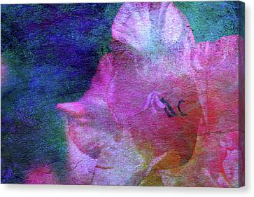 Lost Gladiolus Blossom 3018 L_2 Canvas Print