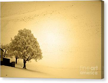 Lost In Snow - Winter In Switzerland Canvas Print