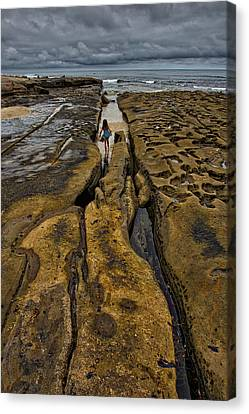 Lost In The Maze Canvas Print by Peter Tellone