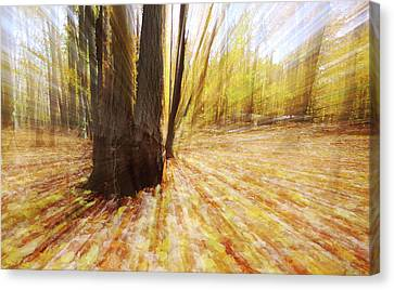 Lost In Time Canvas Print by Mircea Costina Photography