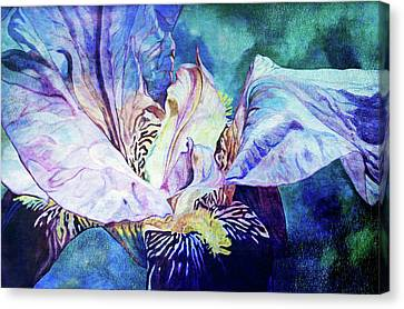 Lost Iris Passion 93 L_2 Canvas Print