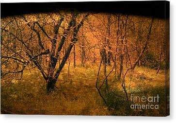 Lost Canvas Print by Jayme X