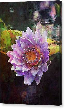 Lost Lavender Lotus Blossom 4725 Ldp_2 Canvas Print