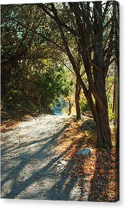 Canvas Print featuring the photograph Lost Maples State Park Path 4 by Karen Musick