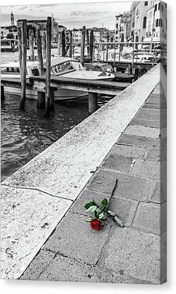 Lost Red Rose In Venice Canvas Print