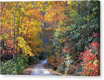Lost Road Canvas Print by Bob Jackson