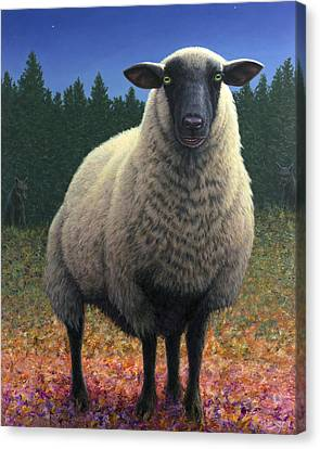 Lost Sheep Canvas Print by James W Johnson