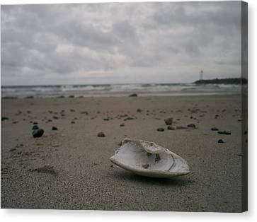 Ogunquit Beach Main Canvas Print - Lost Shell by Casey Woodward