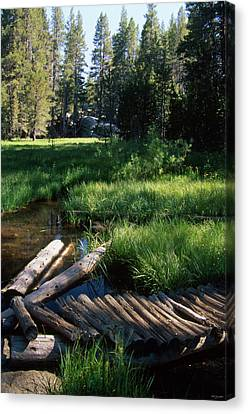 Lost Trout Creek Canvas Print by Soli Deo Gloria Wilderness And Wildlife Photography