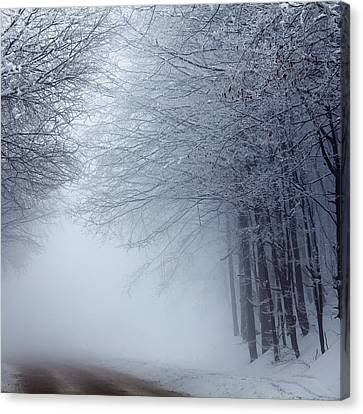 Lost Way Canvas Print by Evgeni Dinev