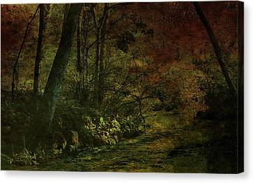 Lost Woods 8140 H_3 Canvas Print