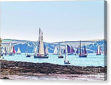 Lots Of Yachts Canvas Print by Terri Waters