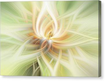 Lotus Abstract Canvas Print by Terry DeLuco