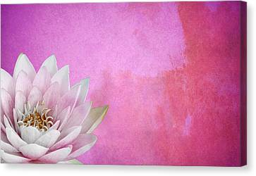 Water Lillies Canvas Print - Lotus by Mark Rogan