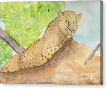 Canvas Print featuring the painting Lounging Leopard by Vicki  Housel