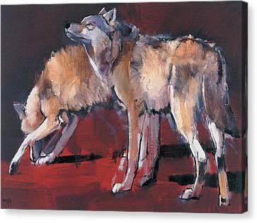 Loups Canvas Print by Mark Adlington