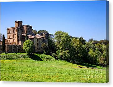 Lourmarin Castle Canvas Print by Olivier Le Queinec