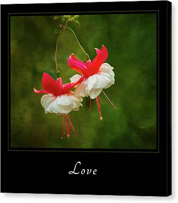 Canvas Print featuring the photograph Love 1 by Mary Jo Allen
