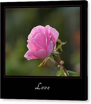 Canvas Print featuring the photograph Love 2 by Mary Jo Allen