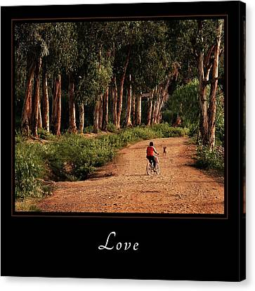 Canvas Print featuring the photograph Love 3 by Mary Jo Allen