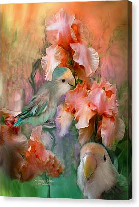 Love Among The Irises Canvas Print by Carol Cavalaris